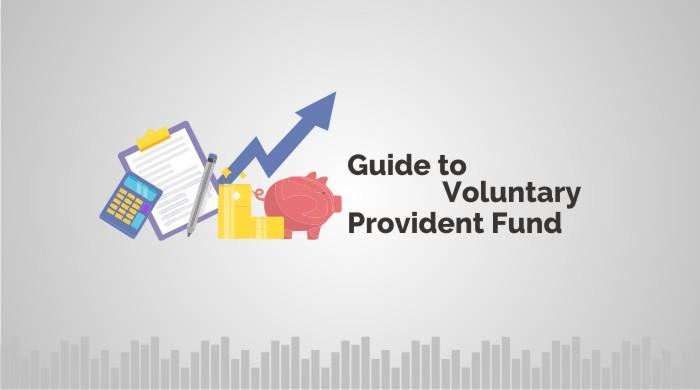 VPF (Voluntary Provident Fund)